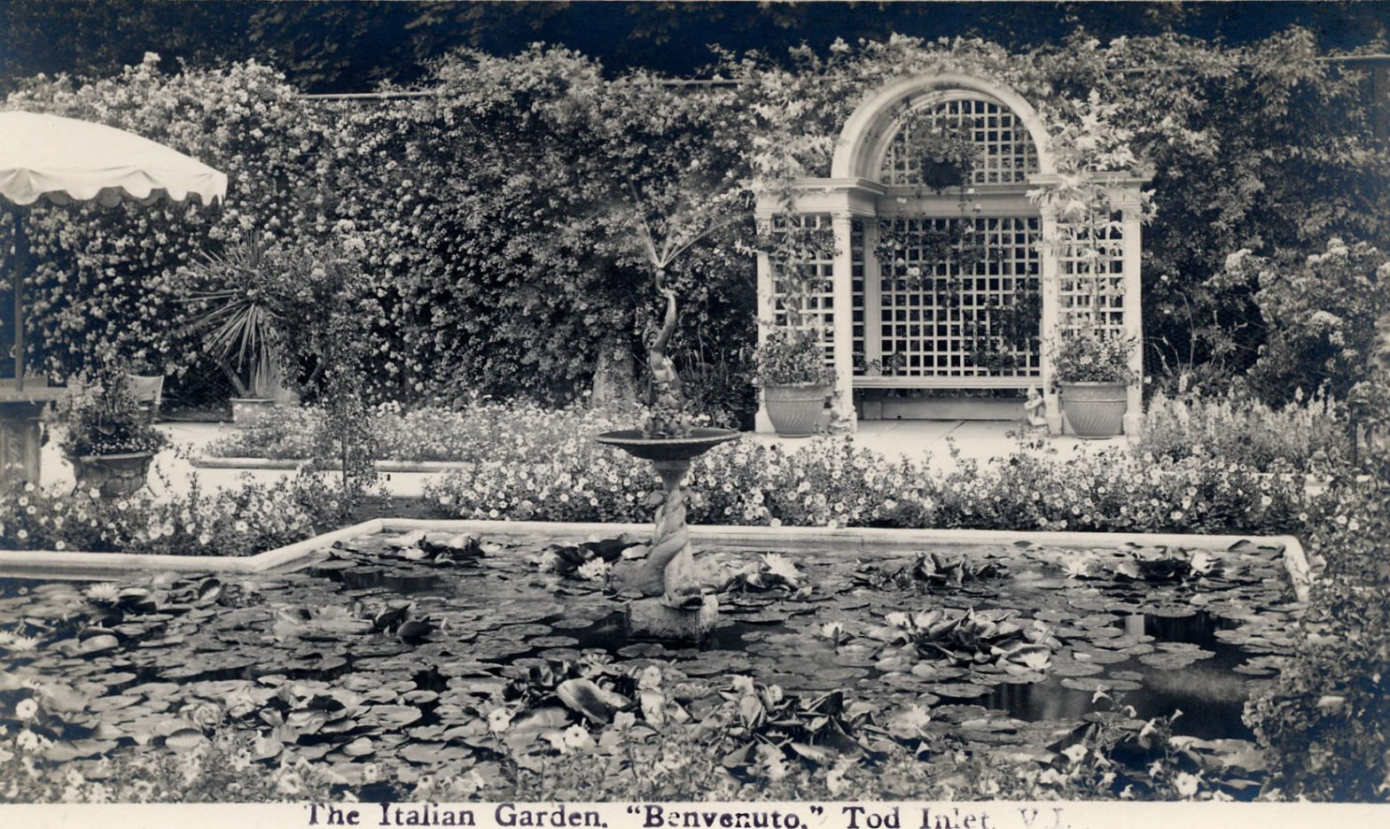 Postcard of the Italian Garden, looking east, circa 1926-1928, prior to the construction of the 1929 addition to Benvenuto on the east side of the Italian Garden. The arbour in the photo was designed by architect Samuel Maclure in 1925. (Author's collection)