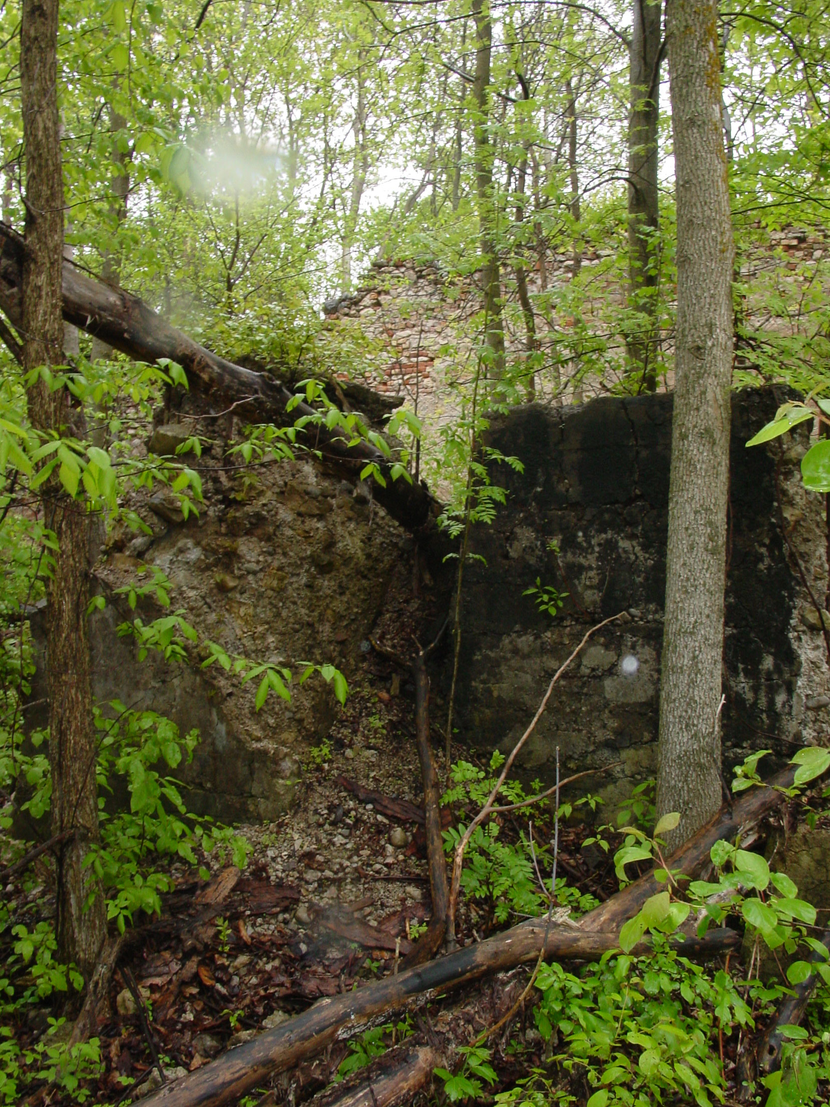 Ruins of the Owen Sound Portland Cement Company factory, Shallow Lake, Ontario, 2003 (photo by author)