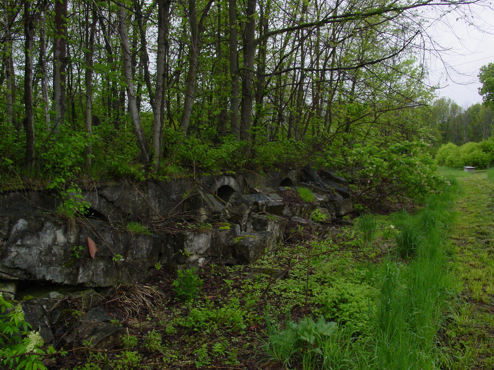 Remains of storage bins among the ruins of the Owen Sound Portland Cement Company factory, Shallow Lake, Ontario, 2003. (photo by author)