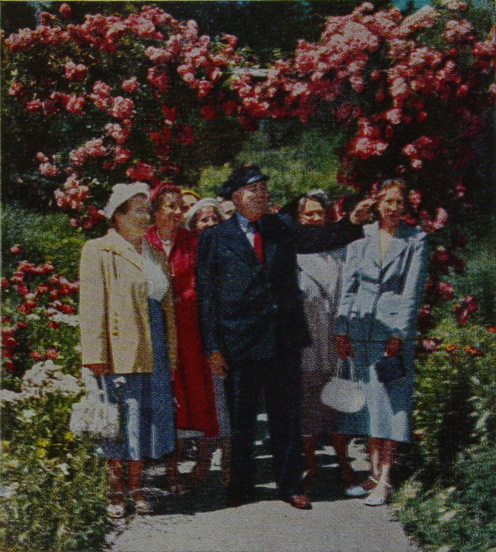 "George ""Rebel"" Mowat leading a tour through the Rose Garden at Butchart Gardens, 1952. This photo appeared in a 1952 article in Macleans magazine (Macleans.ca)"