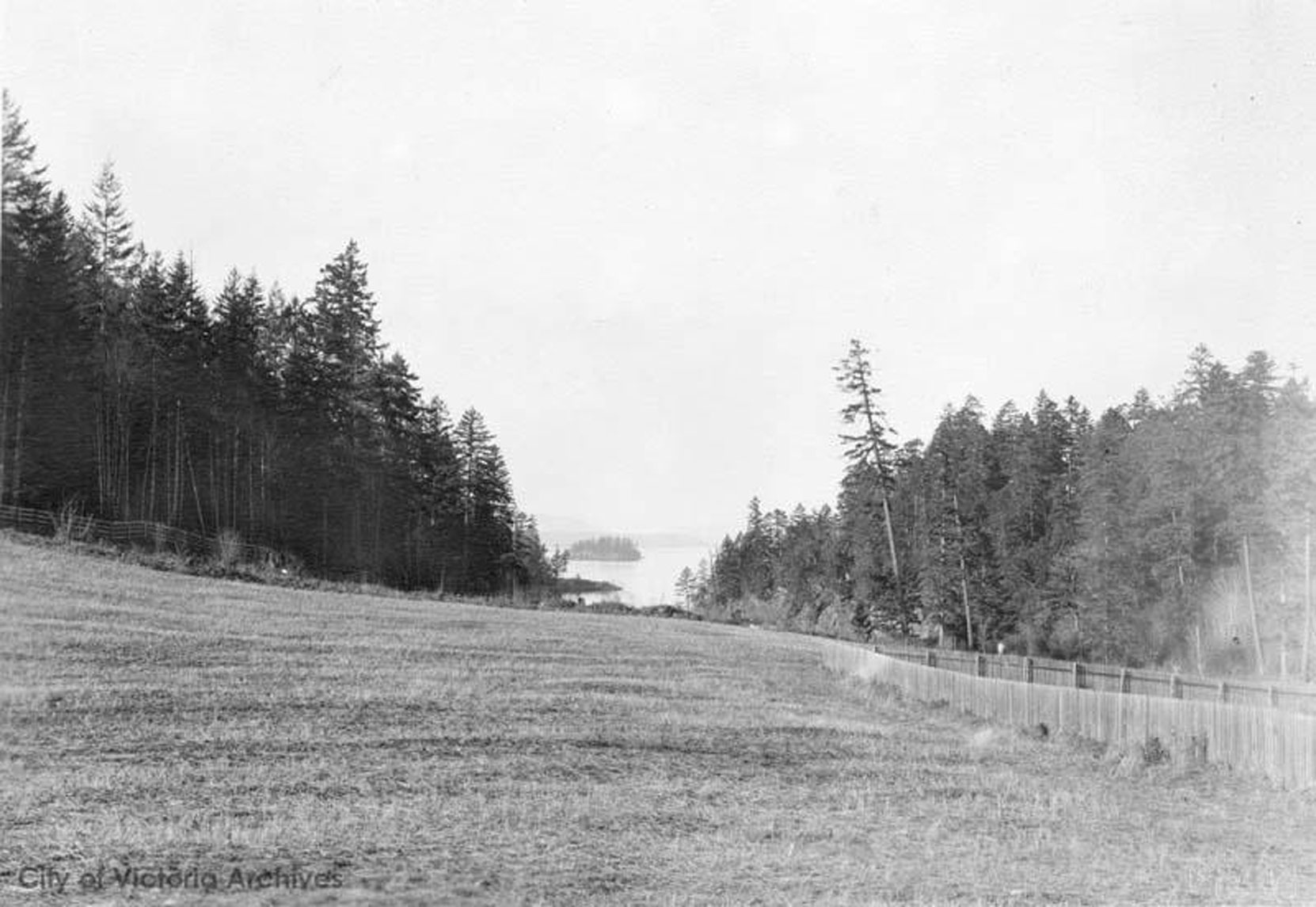 The site of the Japanese Garden, looking north west toward Butchart Cove, circa 1904 (City of Victoria Archives photo M-05823)